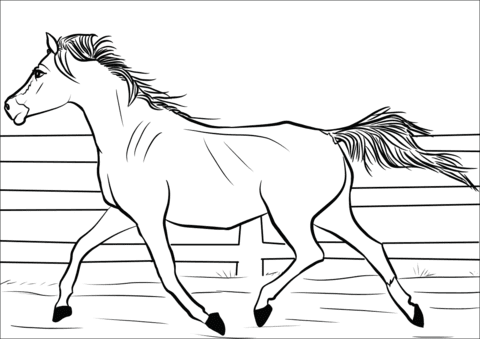 horse coloring pages for kids download